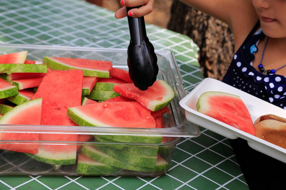 Summer Camp Food A Westchester Day Camp For Upper Manhattan